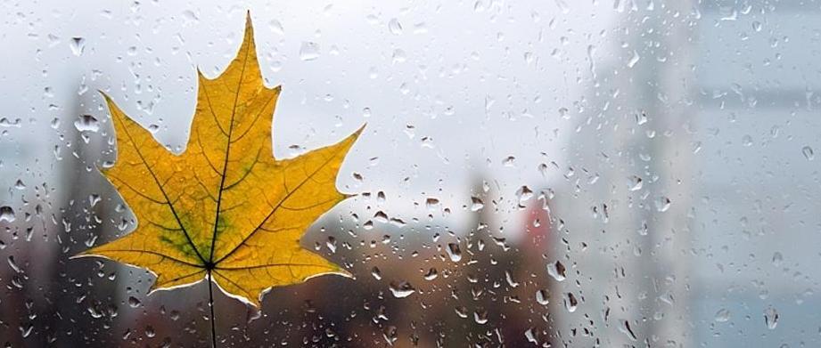 5 причин замовити жалюзі восени